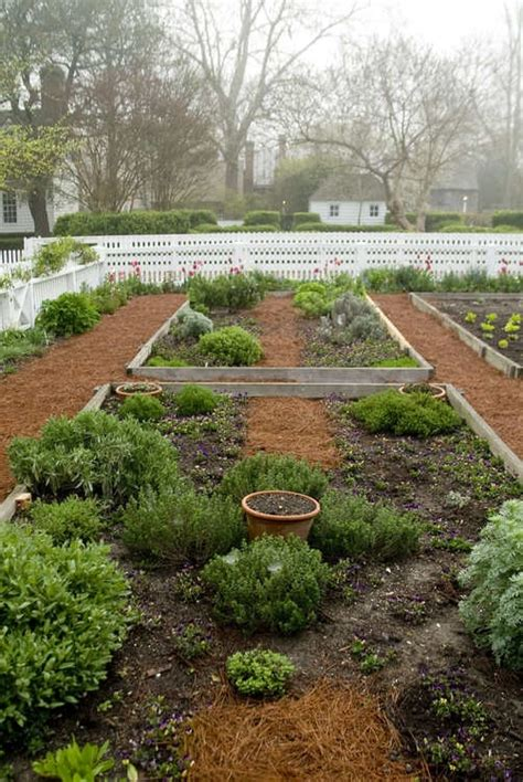herb garden in colonial williamsburg for