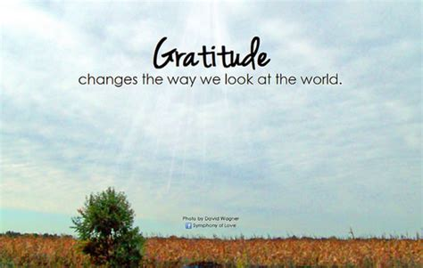 10 Ways Gratitude Can Change Your Life & 4 Step Gratitude