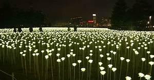 walkover lighting garden pavement lights by serralunga With outdoor string lights hong kong