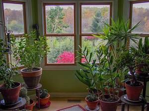 Jardin D Interieur : jardin d int rieur le guide complet pour un jardin r ussi ~ Dode.kayakingforconservation.com Idées de Décoration