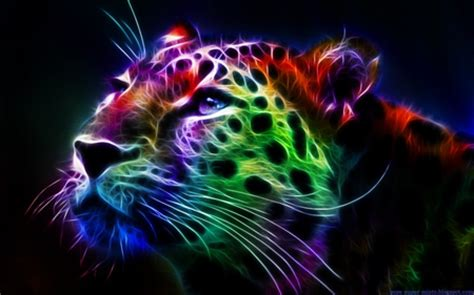 Rainbow Animal Wallpaper - rainbow leopard cats animals background wallpapers on