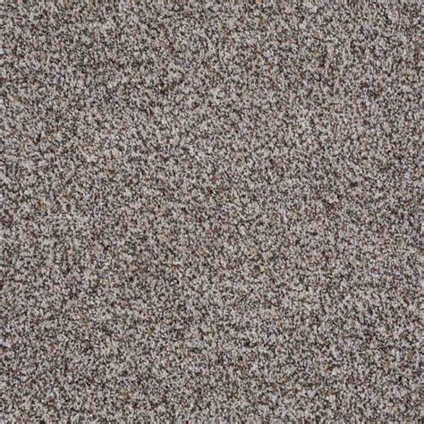 shaw flooring carpet shaw floors treat me style no e0681