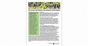 Ensuring Food Safety In The Vineyard  Wine Grapes