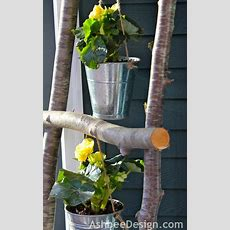 Heart Maine Home Creative Ways To Use Birch Branches In