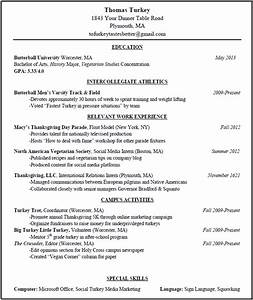 Mock resume free excel templates for Free mock resumes