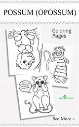 Coloring Opossum Pages Printable Animal Possum Sheets Momjunction Animals Colouring Nocturnal Craft Activity Favorite Activities sketch template