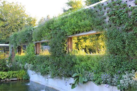 Garten Pflanzen Sichtschutz Siddhimindinfo