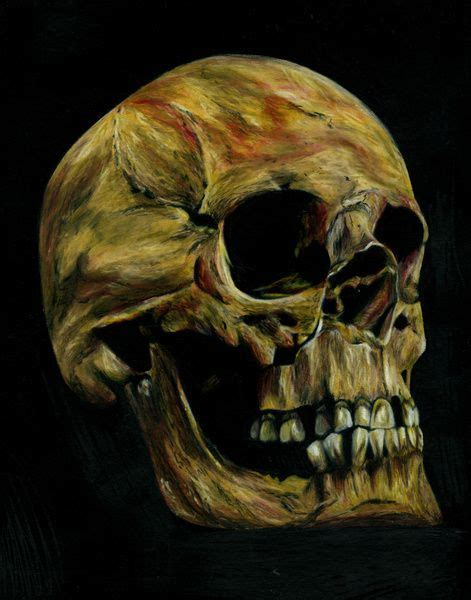 Skull Colored Pencil Drawing Sam Luotonen Samantha
