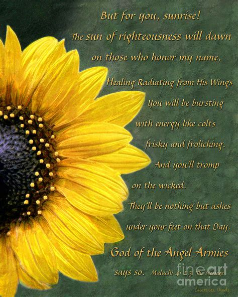 sunflower scripture painting by constance woods