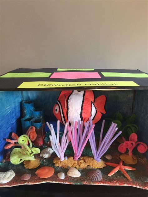 clown fish habitat diorama  images habitats projects