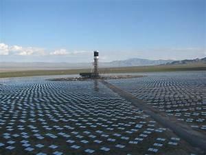 California solar power plants singeing bird feathers