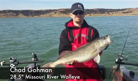 table rock lake crappie beds sioux falls fishing report walleye bite at blue dog