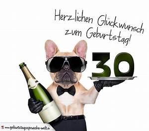 Geburtstagssprüche 30 Lustig Frech : gl ckwunschkarte mit hund zum 30 geburtstag geburtstagsspr che welt ~ Frokenaadalensverden.com Haus und Dekorationen