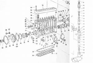 Pompe Injection Cav 3 Cylindres : pompe injection en ligne 3 cylindres bosch ~ Gottalentnigeria.com Avis de Voitures