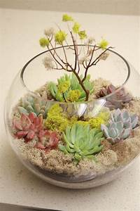 11 succulent centerpieces for a wedding reception with eco