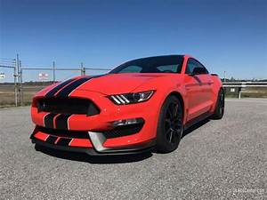 2016 Ford Mustang GT350 | Cars for sale in Newnan, Georgia | UsAdsCenter.com - 173664