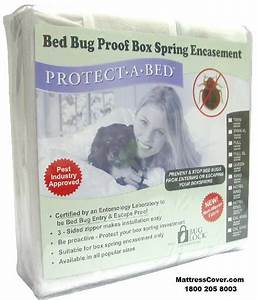 box spring encasement covers for bed bug prevention With best box spring encasement