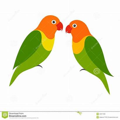Objects Clipart Lovebird Parrot Vector Illustration Isolated