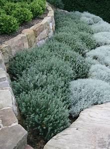 Bodendecker Statt Gras : 49 besten gartengestaltung der mediterrane garten bilder auf pinterest g rten gardening und ~ Sanjose-hotels-ca.com Haus und Dekorationen