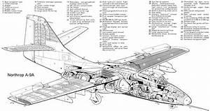 Cutaway Thursday  Northrop A