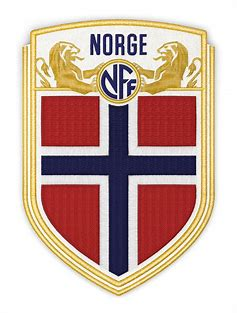Image result for norway football