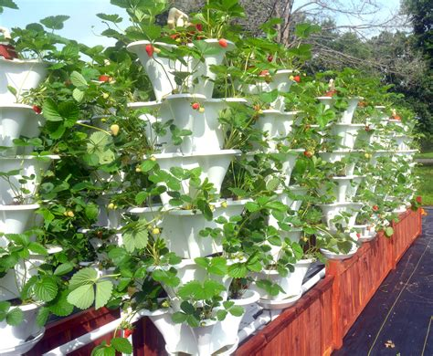 vertical gardening containers texas based ezgro garden allows anyone anywhere to grow crops vertically inhabitat green