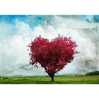 Nature Tree HD Wallpaper - SUPERHDFX