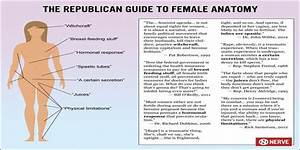 The Republican Guide To Female Anatomy   Politics