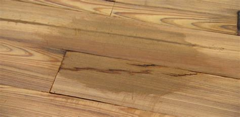 wood floor stain removal tips on removing stains from wood floors today s homeowner