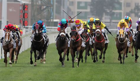 Japan Horse Racing News