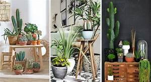 Plante De Salon : 20 astuces d co pour mettre ses plantes en valeur ~ Teatrodelosmanantiales.com Idées de Décoration