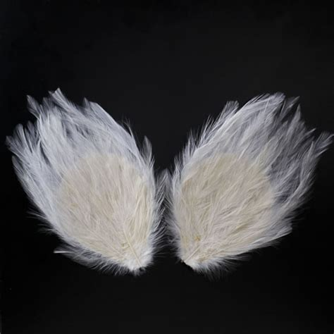 17 best images about wing feathers from heaven on feathers wings
