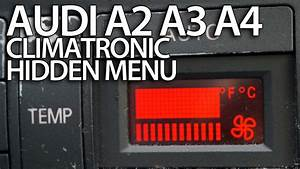 How To Enter Hidden Service Menu In Audi A2  A3 8l  A4 B5 Climatronic  Secret  Hvac  Diagnostic