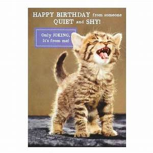 Birthday Greeting For Cat Lovers Free Cards Cats Best Business