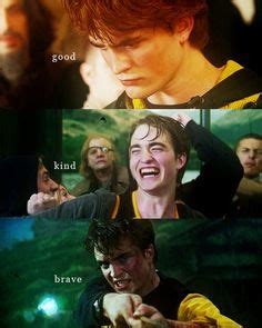 Harry Potter and Cedric Diggory Memes