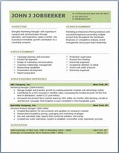 Best Professional Resume Format Download