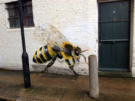 bees   walls   people aware  colony collapse