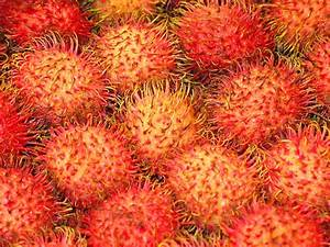 Countries with the most exotic fruits in the world