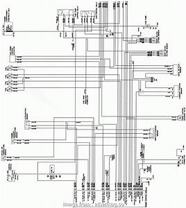 Electrical Wiring Diagram Hyundai Atos Cleaver Repair
