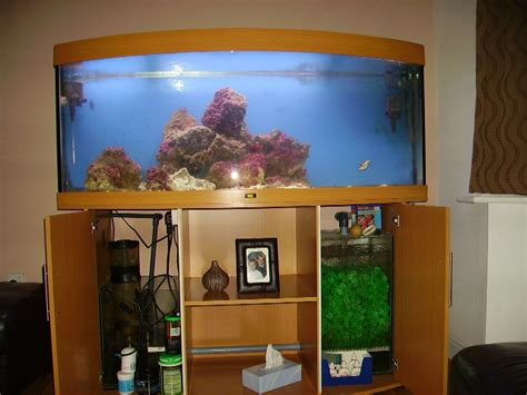 juwel vision 450 marine system at aquarist classifieds