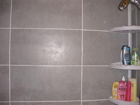 photo donne 12 carreaux carrelage gris clair 30x60 soi