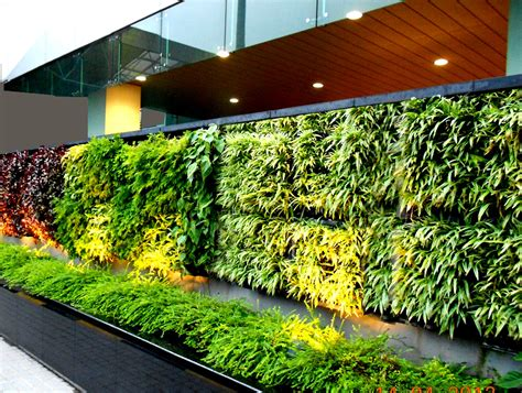 Of Vertical Gardens by Agro Wall Vertical Garden Planting System Agro Wall