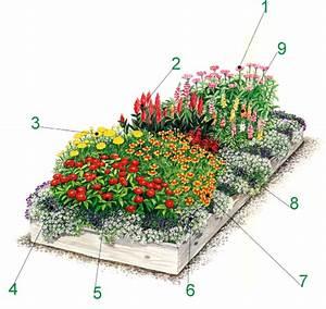 Hochbeet Blumen Bepflanzen : hochbeet auch an ungeeigneten standorten blumen ansiedeln ~ Watch28wear.com Haus und Dekorationen
