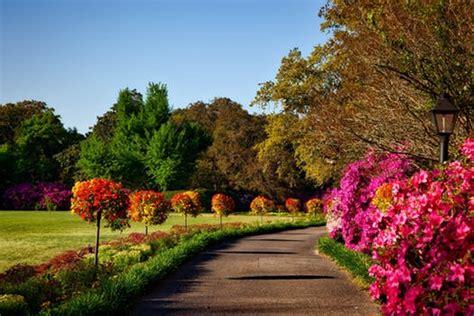 Garden Picture by 1000 Amazing Flower Garden Photos 183 Pexels 183 Free Stock