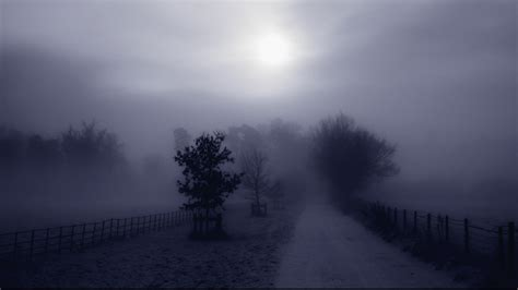 fog wallpapers full hd pictures