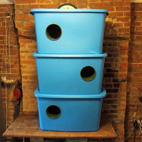 winter feral cat shelter build instructions bushwick
