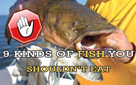 warning  kinds  fish    eat