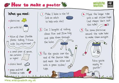 Charity Action For Animal Shelter Poster Templates by Sweep Like An Entomologist The Wildlife Trusts