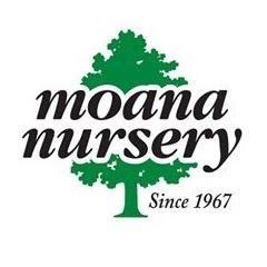 moana nursery in reno nv 89509 citysearch