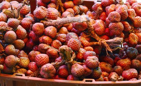 sarawak  ed unique fruits